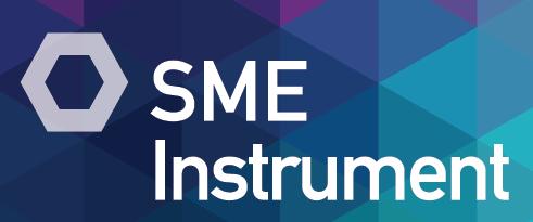 SME-Instrument-in-Horizon-2020-1